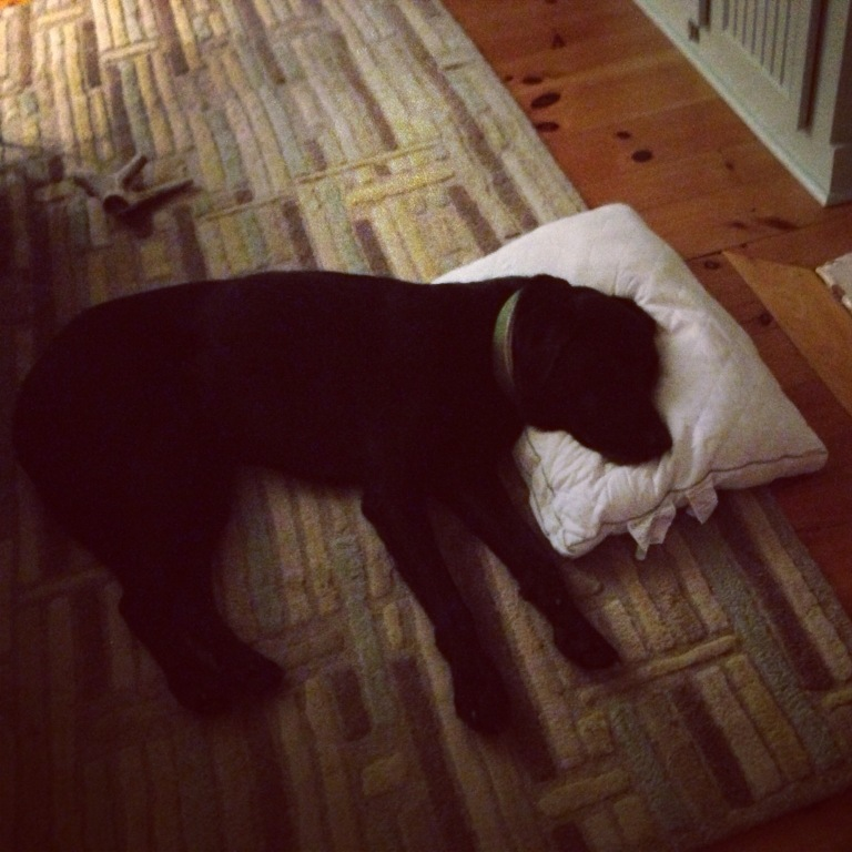 Is that my pillow?